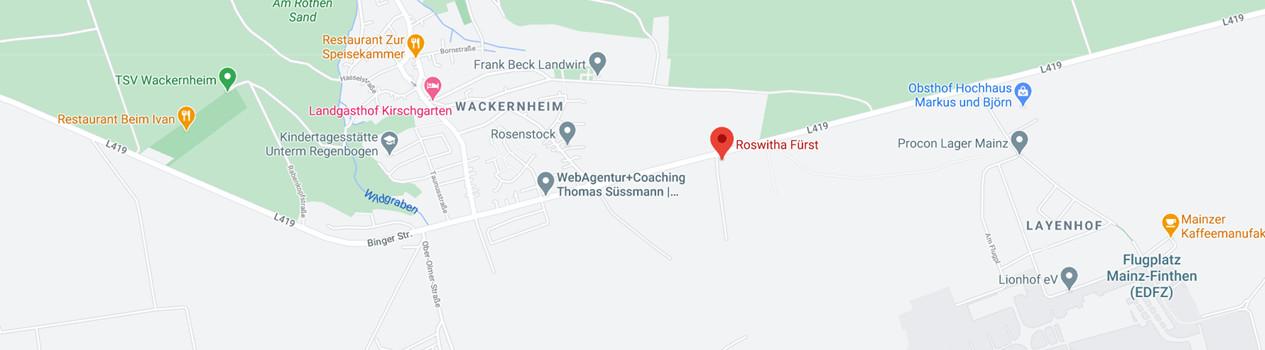 Anfahrt Life Coach Mainz Roswitha Fürst